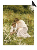 Picking Daisies, 1905 Posters by Hermann Seeger