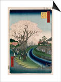Cherry Blossoms, Tama River Embankment Posters by Ando Hiroshige