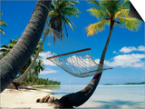 Hammock Hanging Seaside Plakater af Randy Faris