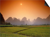 Rice fields an chalk mountains at twilight, Yangshou, Guangxi Province, China Print by Frank Krahmer