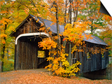 Covered Bridge and Maple Trees Poster by James Randklev