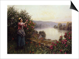 A Pet Rosebush Prints by Jean-Baptiste-Camille Corot