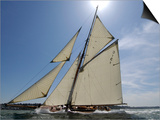 Mariquita under Sail, Solent Race, British Classic Yacht Club Regatta, Cowes Classic Week, 2008 Posters by Rick Tomlinson