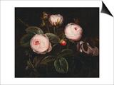 Pink Roses Posters by Johan Laurentz Jensen