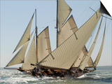 Mariquita under Sail, Solent Race, British Classic Yacht Club Regatta, Cowes Classic Week, 2008 Posters by Rick Tomlinson