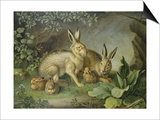 Hares and Leverets in a Rocky Lair Print by Johann Wenzel Peter