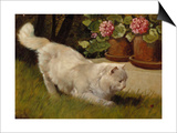 A White Persian Cat with a Ladybird Posters by Cecil Aldin