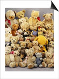 A Large Selection of Teddy Bears Print