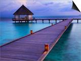Pier at Island Hideaway at Dhonakulhi in Haa Alifu Atoll Prints by Frank Krahmer