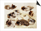 A Study of Kittens Print by Henriette Ronner-Knip