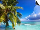 Beach at Soneva Fushi Resort in the Baa Atoll Poster by Frank Krahmer