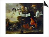 A Concert of Birds Prints by Melchior de Hondecoeter