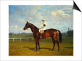 The Racehorse, 'Northeast' with Jockey Up Prints by Emil Adam