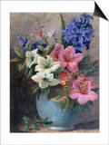 A Vase of Azaleas and Hyacinth Prints by Charles Henry Slater