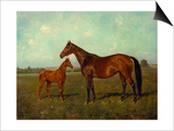A Mare and Foal in a Landscape Prints by Franz Reichmann