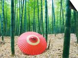 Coarse Oilpaper Umbrella in Bamboo Forest, Muko City, Kyoto Prefecture, Japan Posters