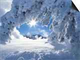 Snowy Landscape in Yellowstone Art by Jeff Vanuga