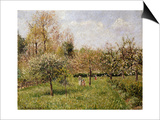 Spring at Eragny Prints by Camille Pissarro