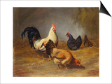 Poultry Feeding Posters by Arthur Fitzwilliam Tait