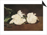 Branch of White Peonies and Secateurs Posters by Édouard Manet