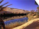 Oasis at Um Al Ma salt lake, Sahara desert, Ubari, Libya Posters by Frans Lemmens