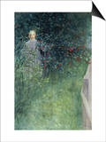 In the Hawthorn Hedge Prints by Carl Larsson