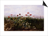 Flowers on the Irish Coast Prints by Andrew Nicholl