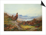 Morning of the Twelfth Posters by Archibald Thorburn