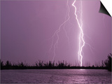 Lightning Striking near Lake Prints by Mike Theiss