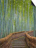 Bamboo Lined Path at Adashino Nembutsu-ji Temple Prints by Rudy Sulgan