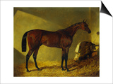 The Race Horse 'Merry Monarch' in a Stall Prints by John Frederick Herring I