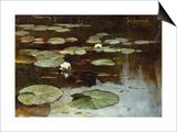 Water Lilies Posters by Julius Sergius Klever