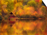 Wooden Cabin on Lake in Autumn Posters by Robert Llewellyn