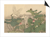 Egrets and Lotus Print by Imao Keinen
