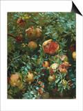 Pomegranates, Majorca Prints by John Singer Sargent