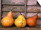 Studio-Pears Posters by Kim Koza