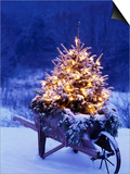 Lighted Christmas Tree in Wheelbarrow Print by Jim Craigmyle