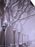 Central Park in winter Poster by Gildo Nicolo Spadoni