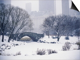 Snow over Central Park in New York Prints by Scott Barrow