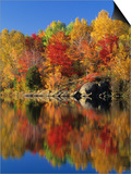 Simon Lake Reflection, Naughton, Ontario, Canada Prints by Mike Grandmaison