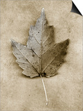 Maple Leaf Art by John Kuss