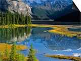 Mount Kitchener Reflected in Pond Near the Beauty Creek Hostel, Jasper National Park, Alberta, Cana Prints by Darwin Wiggett