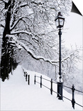 Trees and lamp post in snow Print by Bruno Ehrs