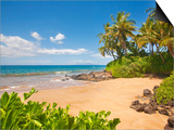 Secluded sandy beach on Maui Prints by Ron Dahlquist