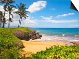 Secluded Po'olenalena Beach on Maui Prints by Ron Dahlquist