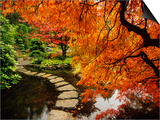 Autumn Colors in Butchart Gardens, Victoria, Vancouver Island, British Columbia, Canada Prints by  Barrett & Mackay