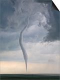 Rope tornado Prints by Jim Edds