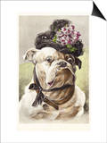 Hand-Colored Postcard of a Bulldog Dressed in a Bonnet Print