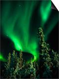 Aurora Borealis or Northern Lights, Yukon. Prints by Robert Postma
