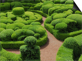 Topiary Garden at Chateau de Marqueyssac Prints by David Burton